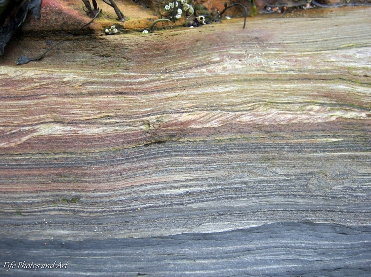 Textures and colours of 320 million year old rock from Ravenscraig Beach, Kirkcaldy