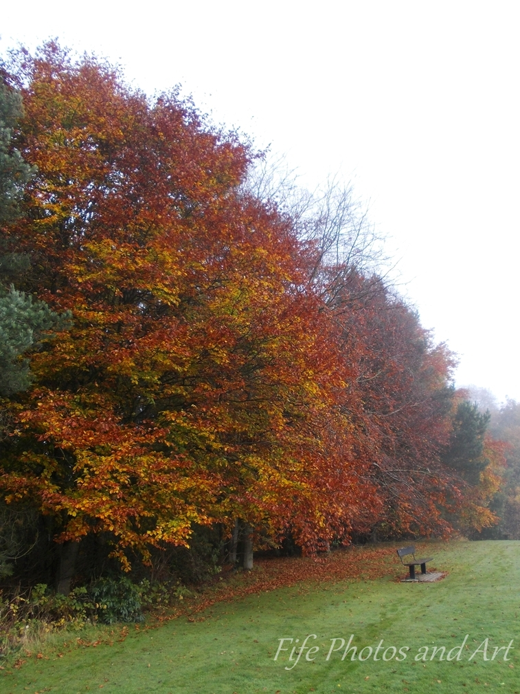 Autumn Colours in Balbirnie Park, nr Glenrothes