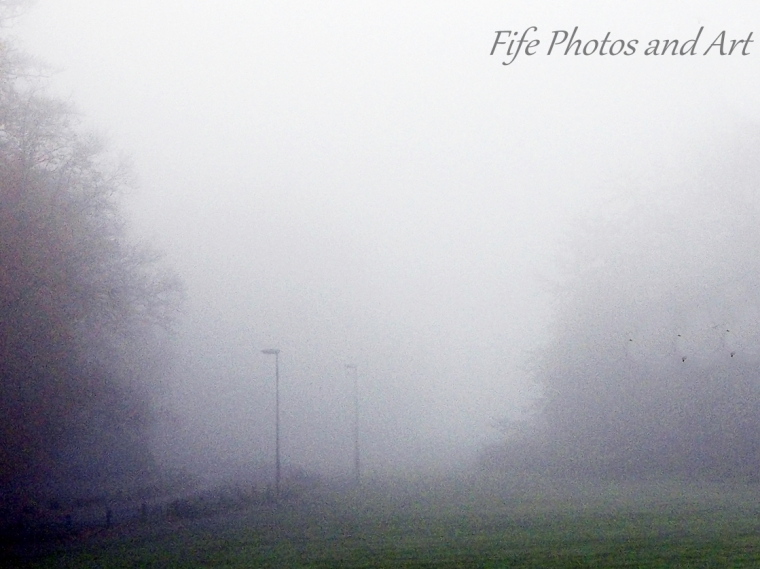 Early Morning Fog at Balbirnie Park